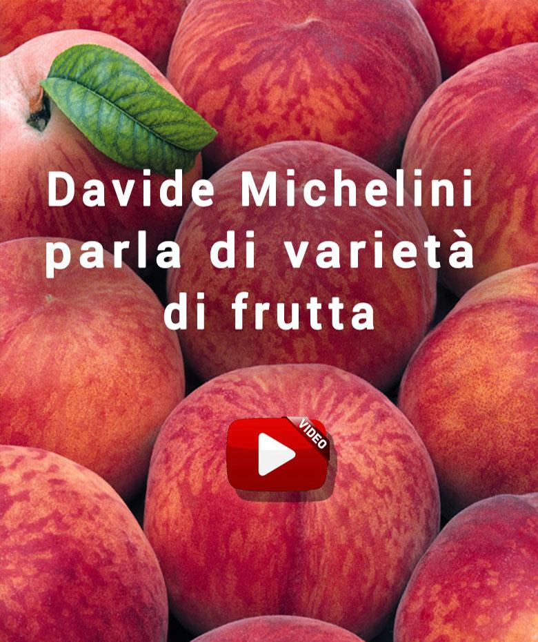 Davide Michelini parla di frutta_780x930