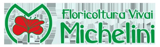 logo_vivai_michelini_bagliore_bianco_543x160_orizzontale