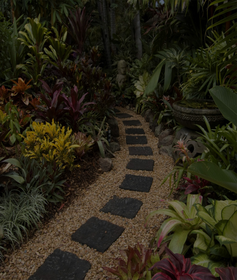piante da esterno2
