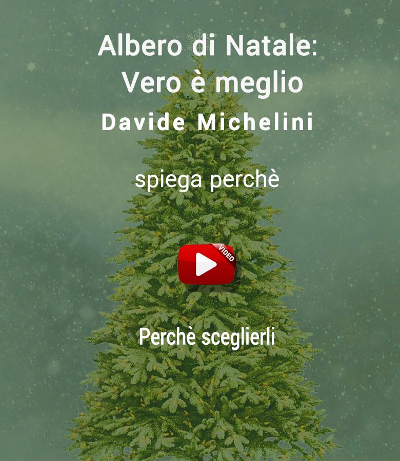 abete_di_natale_meglio_video_1