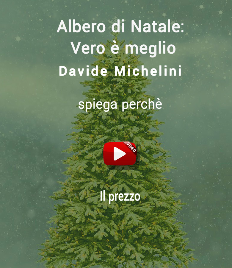 abete_di_natale_meglio_video_2